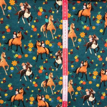 Bild Spirit Pferdeliebe reitermädchen
