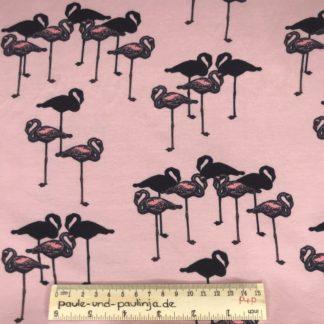 Bild Baumwolljersey, Jersey, stretch, dehnbar, Jerseystoffe, Stoffe, Muster, Motiv, rosa, Flamingos, Tiere, schwarze Flamingos, schwarz