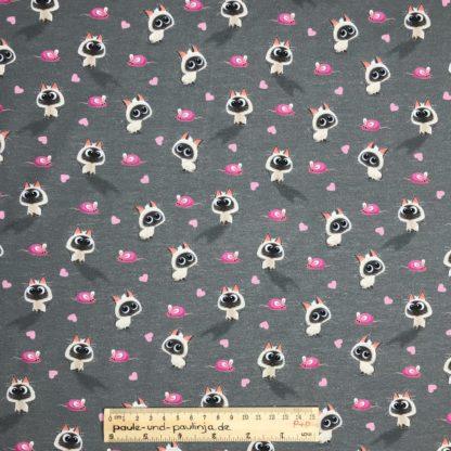 Bild Baumwolljersey, Jersey, stretch, dehnbar, Jerseystoffe, Stoffe, Muster, Motiv, grau, weiße Kätzchen, Katzen, Maus, Mäuschen, Herz